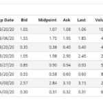 Options Market Overview February 21 2020