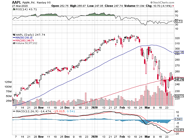 Apple Inc. (AAPL) stock daily chart